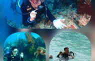 Saat Diving di Pantai Pulisan, Bupati JG Terpukau Pesona Alam Bawah Lautnya