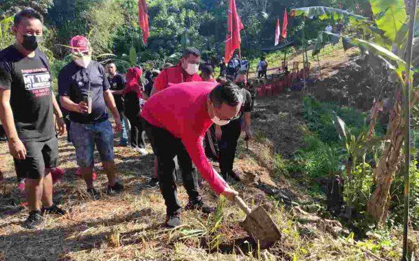Peringati Bulan Bung Karno, DPC PDI-P Kota Manado Lakukan Penanaman Pohon
