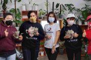 Kunjungi Green Whispers, Dinas Pertanian Minahasa Apresiasi Petani Milenial Enjie Jacklin